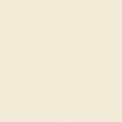 Кромка ПВХ Слоновая Кость 0,6*22 519.01