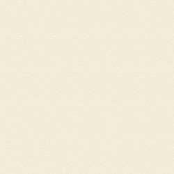 Кромка ПВХ Слоновая Кость 2*22           519.01