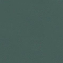 Кромка ПВХ  19*0,45   Зеленый пастельный   73782  REHAU