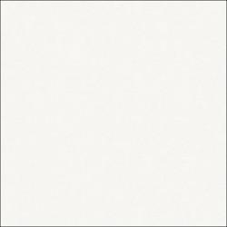 ДСП лам 2750*1830*16 Бодега
