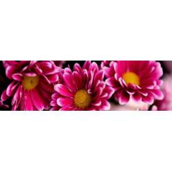 МДФ 2800х820х16 глянец  Цветы+дерево цветное-верх (01 KF 014 V)