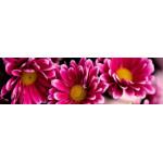 МДФ 2800х820х16 глянец Цветы+дерево-верх (01 KF 012 V)