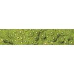МДФ глянец стен. влагоустойч. 2800х600х6   Киви  (SP 016)